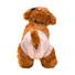 Pet diaper (5).jpg