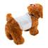 Pet diaper (4).jpg